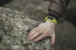 Fitness trackers are an easy way to monitor your movement