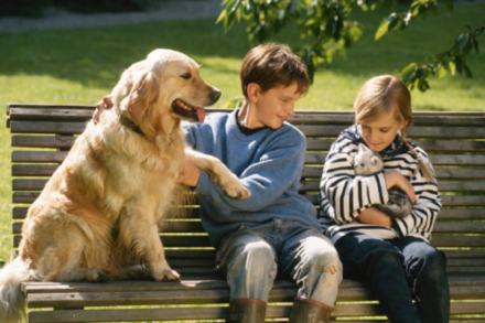 Families with Pets Have Happier Children