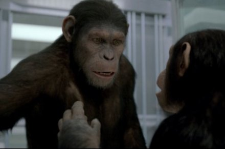 Andy Serkis In Rise of the Planet of the Apes