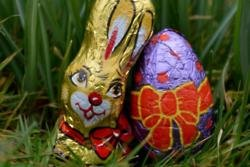 An Easter bunny who was hailed a hero for breaking up a fight has a criminal record