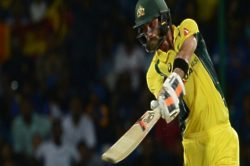 Katich: Maxi needs guidance