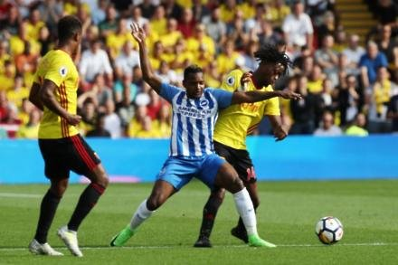 Duo set for first Brighton starts
