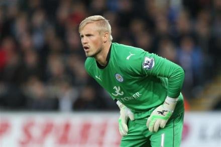 Foxes up for fight - keeper