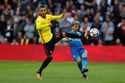 Pereyra injury boost for Hornets