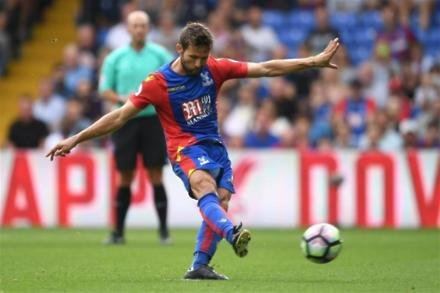 Cabaye in contention for Hornets clash