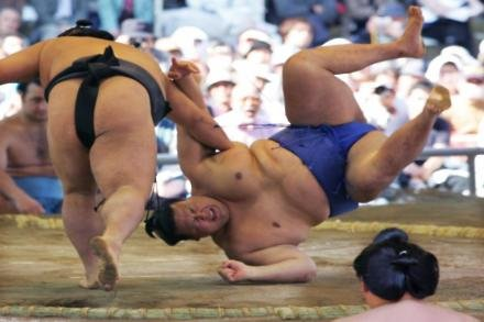 Wenger keen for sumo style respect