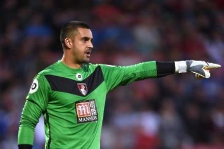 Federici in new Forest link