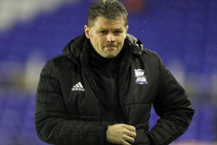 Birmingham can handle the big occasion – Steve Cotterill